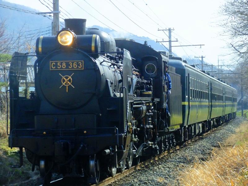 Dscf5353