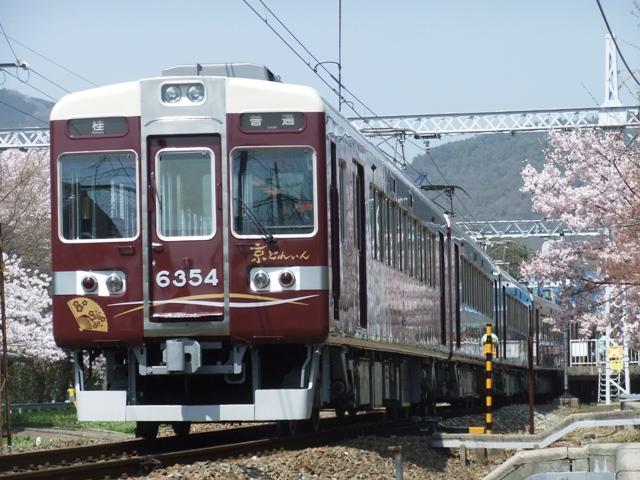 Dscf7126
